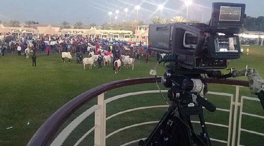 UAE ENDURANCE RACE / DUBAI / UNITED ARAB EMIRATES