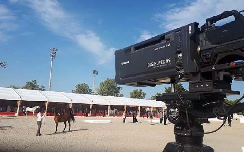 INTERNATIONAL ARABIAN BEAUTY HORSE / ABU DHABI / UNITED ARAB EMIRATES
