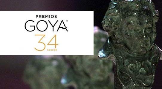 """ALFOMBRA ROJA"" / PREMIOS GOYA 34 EDICIÓN / RTVE / MÁLAGA"